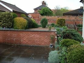 2 BEDROOM FIRST FLOOR FLAT IN THE CENTRE OF HARLESTON