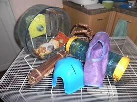 Rat toys and activity extras - ideal starter set up