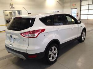 2014 Ford Escape SE| 4WD| ECOBOOST| SYNC| BACKUP CAM| 48,369KMS Cambridge Kitchener Area image 8