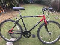 adults okuma mountain bike