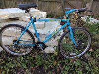 Muddy fox pathfinder 1989(retro mountain bike)