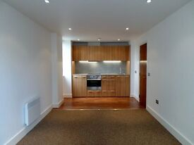 One bedroom Flat in The Mill - well presented with 24hr security coverage