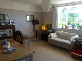 Double Bedroom In Beautiful Two Bed Acton Flat