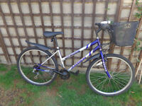 ladies bike with front basket, new lights, d-lock ready to ride can deliver