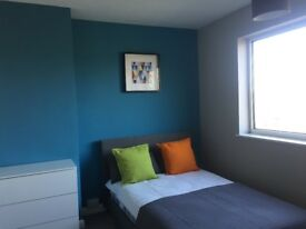Newly Renovated House Share in Ipswich