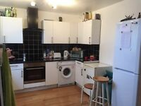 NICE TWIN ROOM TO SHARE IN ROEHAMPTON £85 pw (bills inc)