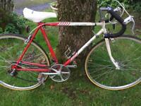 Emmelle Sid Barras Team Custom racing bike