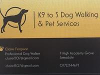 K9 to 5 Dog Walking & Pet Services