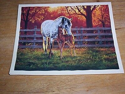 16 Arabian Mare & Foal Blank Note Cards QUIET TIME  by Chris Cummings  NIB
