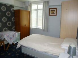 Lovely large single room in good l;ocation