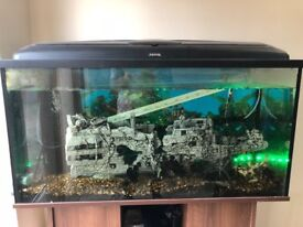 ***OPEN TO OFFERS***Large fish tank and ALL accessories 100x40x50cm