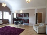 High quality, spacious 1 bedroom apartment, 214 Infirmary Road