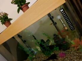 Fish tank 3.5 ft 225 litre with stand great condition