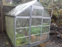 8 x 6ft polycarb greenhouse with auto window opener