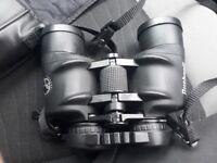 bushnell 10x42 binoculars