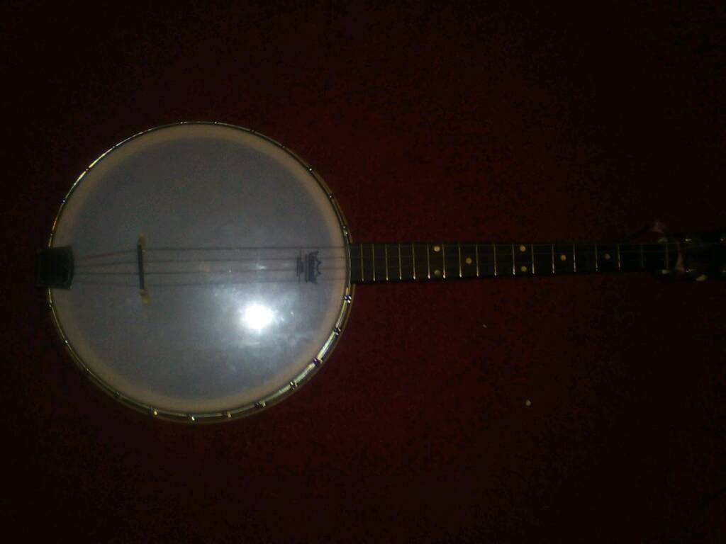 19 fret tenor banjo. Resonator back made in Chicago 1930's
