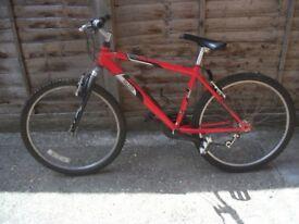 Bike / Raleigh Mantaray