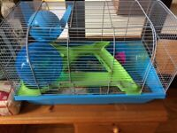 Hamster Cage and accompanying items