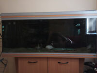 Aquarium Fish Tank 240l + Stand + External Filter
