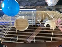 Dwarf hamster cage + play ball