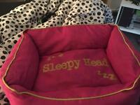 Sleepy head dog bed. Perfect for a puppy or small dog