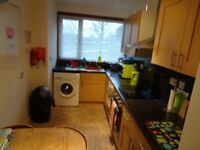 3 double-bedroom house/flat 2 minutes walk from Aberdeen Uni - available for group of 3 students,