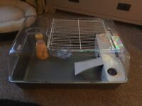 Hamster cage £5 or offers