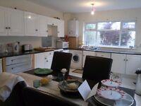 Harmonious beautiful clean house in Newsham Park