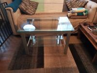 Glass and Steel Modern TV Stand