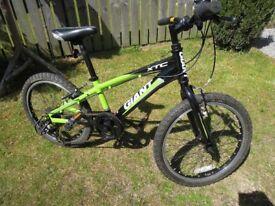 Kids Mountain Bike (Giant)