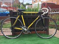 Peugeot pro-team racer / road bike