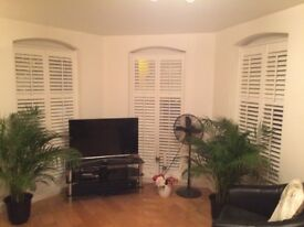 Plantation shutters - new, never fitted. Excess stock.