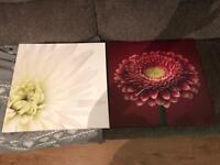 Wall Flower Frame X2