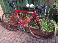 Trek Madone 5.5 full carbon frame 54cm
