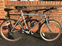 Mountain Bikes (1X Diamond Back 2X Raleigh)
