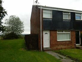 Fantastic 3 Bedroomed House To Rent In Brandon