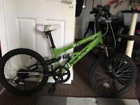 20 inch Boys bike