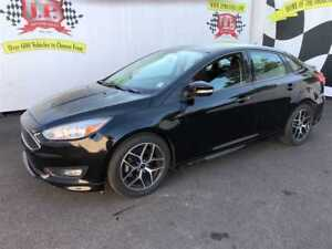 2017 Ford Focus SE, Automatic, Back Up Camera, 23, 000km