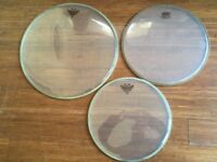 Drum Heads - Remo Ambassador Clears 16/13/12