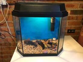 28L Fish tank