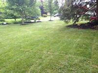 Lawn Aeration for strong healthy root system