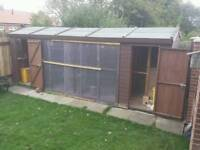 Aviary. And budgies for sale