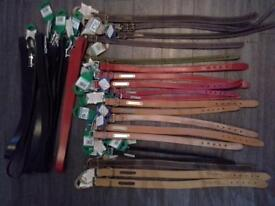 25 x Timberwolf and Ancol Dog Collars and Leads