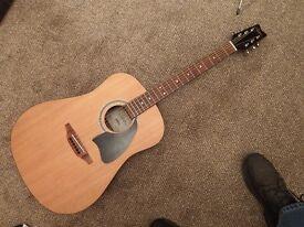 Washburn Lyon Acoustic guitar