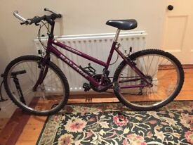 RALEIGH 15 OGRE MOUNTAIN BIKE