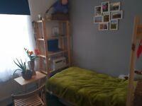 Single room near Turpike Lane station