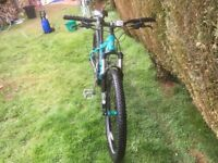 This Is a Whyte 604 good condition