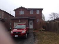 3+1 BEDROOM DETACHED HOME AVAILABLE NOW $1600+