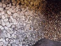 Firewood (2 year seasoned)