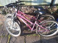 Girls Apollo Vivid bicycles